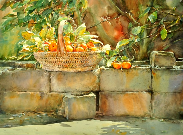 watercolor painting persimmon hand drawn