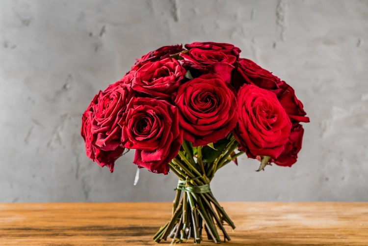 Roses Images