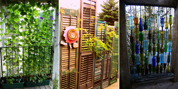12 Clever Ways To Create More Privacy In Your Backyard