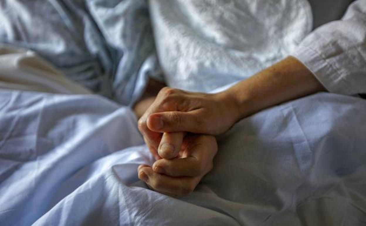 """""""Muerte digna"""": Las claves del proyecto de eutanasia"""