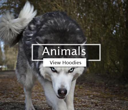 Coolest Animal Hoodies