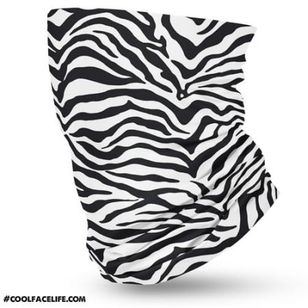 Zebra--1