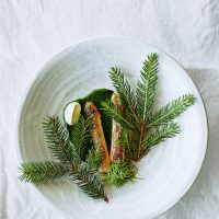 Noma's Grilled Asparagus and Tender Spruce