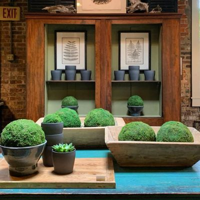 inside the farmers wife antiques store in greensboro nc wooden bread bowls hold green moss balls on a turquoise farm table with wooden shelves behind it