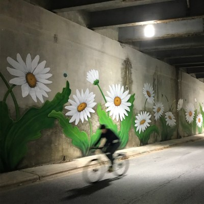 a photo of a cyclist riding by in a blur under a bridge on church street, the bridge support has a colorful daisy mural on it.