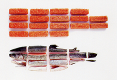 Modern-Fish-Sticks