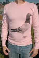 Salvor Pigeon