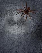 Spiderhuber Sm-1