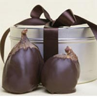 figs-tincrop54.jpg