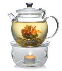 TeaposyWarmer.jpg