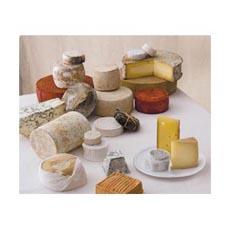 cheese230.jpg