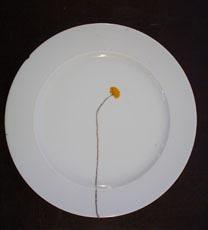 crackery_plate.jpg