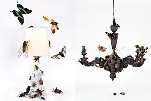 beacon-bug-lamps-floto-warner-1.jpg