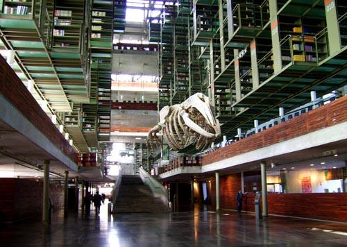 mexico-library.jpg