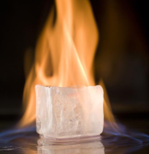neve-icefire-1.jpg