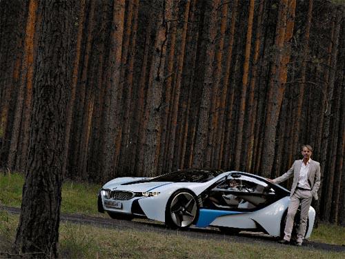 BMWTrees.jpg