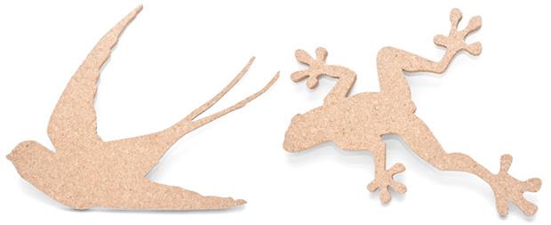 Bio-Corkboard-7.jpg