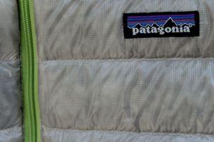 Patagonia See Thru Down