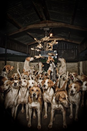 partridgeandhounds1.jpg