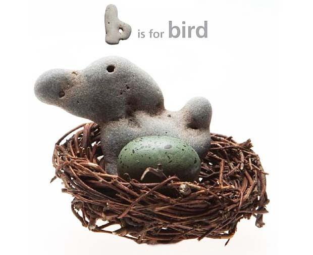 b-is-for-bird.jpg