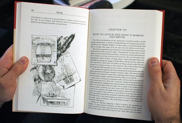 American_Boy_Book2.jpg