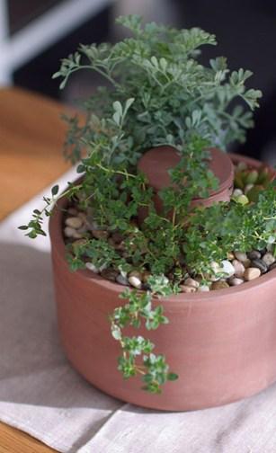 planter-4.jpg