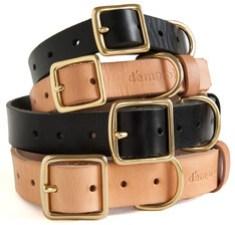 demploi-collar-1.jpg
