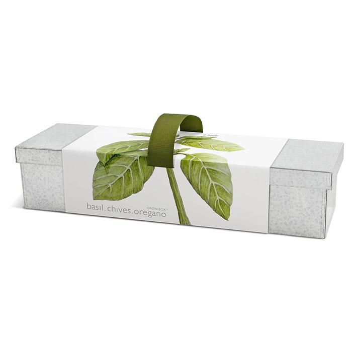 Culinary Herb Window Box