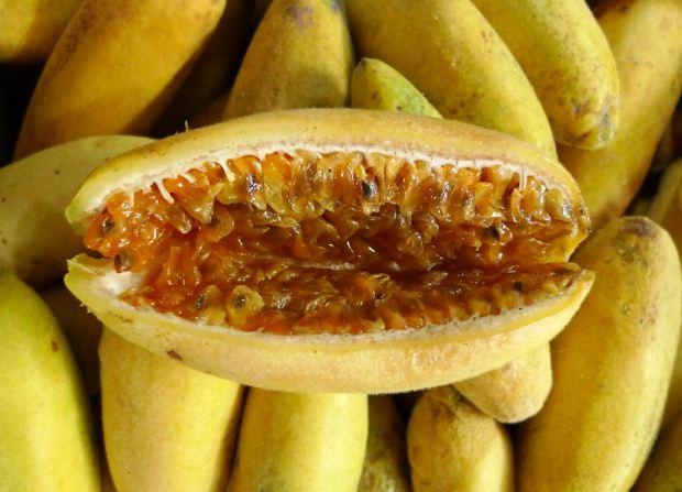 WOM-Medellin-fruit.jpg