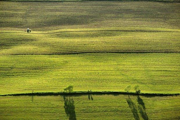 modern-farmer-1.jpg