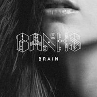 banks-shlomo-brain.jpg