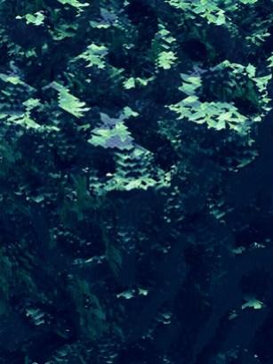 movidoodle1.jpg