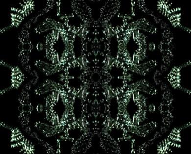 iris-van-herpen-dom-perignon-1.jpg