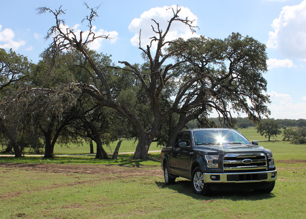 Ford-F150-trees.jpg