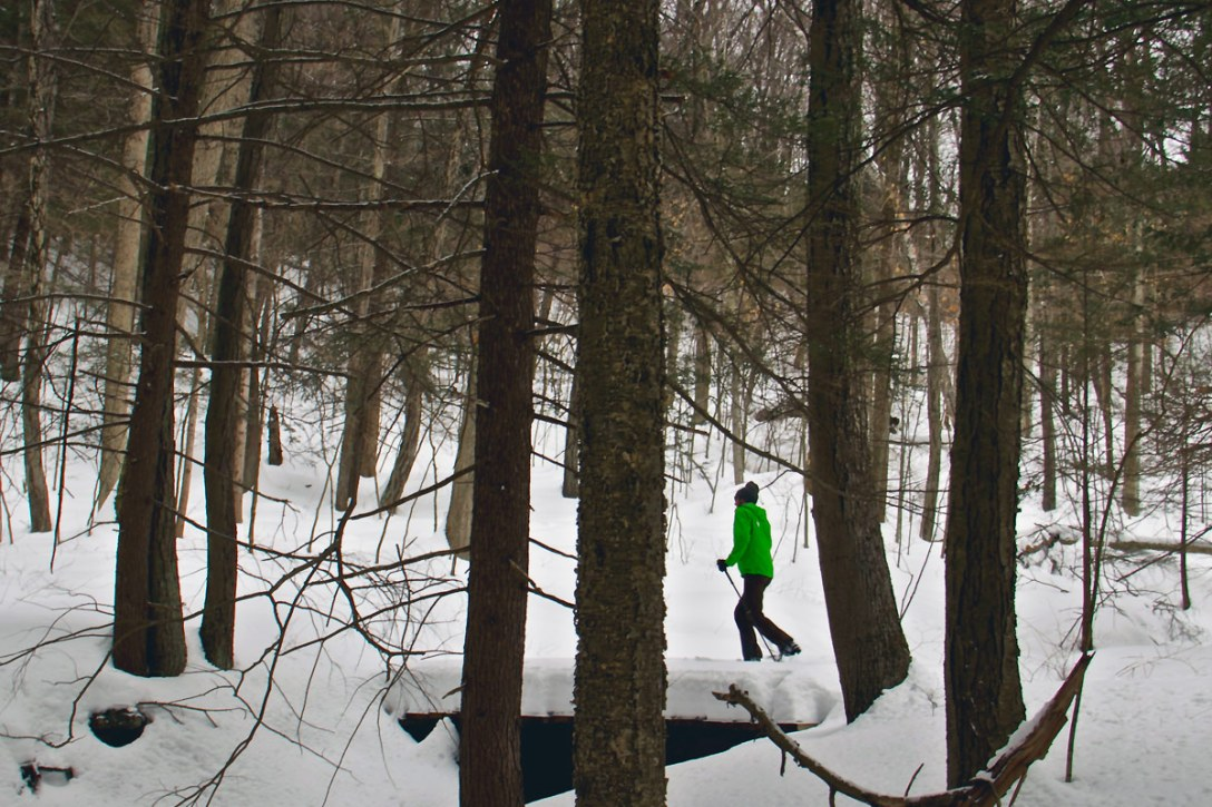 Nordic Skiing: The Basics