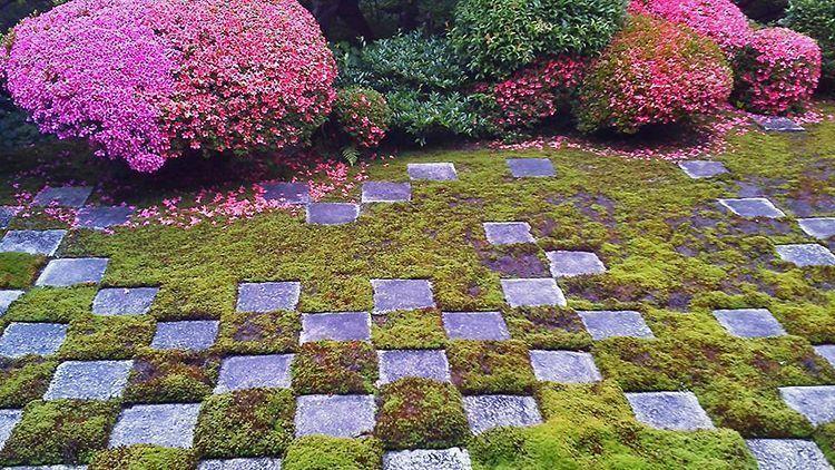 Jardines del templo Tōfuku-ji (Norte). Shigemori Mirei compuso un original damero con musgo y losas que se encontraban en el templo. © Kiseo Yamazaki