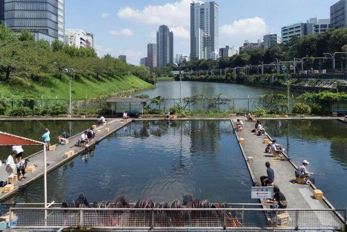 Pescando en el actual foso de Ichigaya