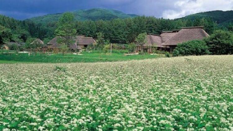 Una de las villas que mejor representa la nostalgia del furusato: Tono (Iwate). Font: Portal de Turismo de la prefectura de Iwate.