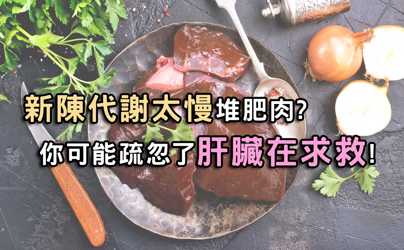 新陳代謝太慢堆肥肉?你可能疏忽了肝臟在求救!