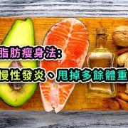 聰明脂肪瘦身法: 降低慢性發炎、甩掉多餘體重的心法