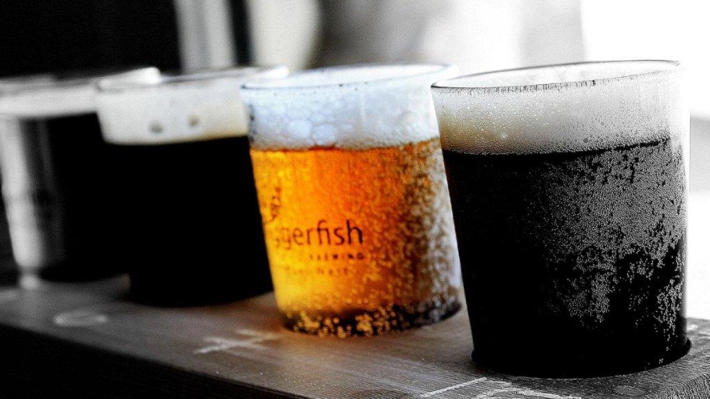 啤酒花是釀造啤酒必不可少的調味料,重要性就像烹飪界的鹽、胡椒與香料。啤酒花為啤酒帶來的風味變化幾乎無可估量。葡萄酒的釀酒師有數百種葡萄可供選擇,啤酒的釀造人同樣面對數百種啤酒花,有些帶有黑醋栗味或泥土味,有些散發強烈的葡萄柚氣味。