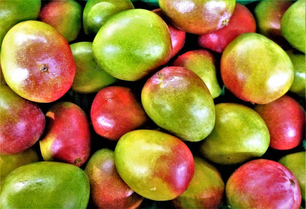 什麼是非洲芒果?非洲芒果對減肥有效嗎?健康益處與風險