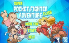 Super Pocket Fighter Adventure