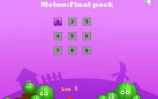 Melon Final Pack