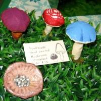 Fun fungus fair!  A mushroom show in Balboa Park!