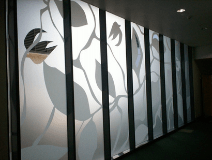 Decorative Films