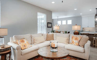 Choosing Between the 5 Best Window Films for Your Home