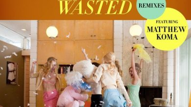 Photo of Tiësto – Wasted (Remixes) [feat. Matthew Koma] – EP (iTunes Plus) (2014)