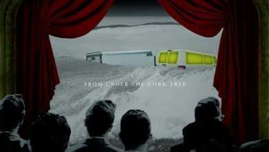 Photo of Fall Out Boy – From Under the Cork Tree (iTunes Plus) (2005)