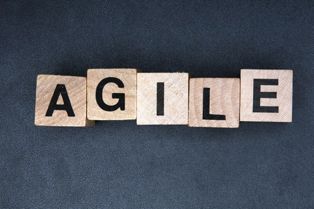 Some thoughts on Agile/Scrum…